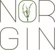 NORGIN Logo